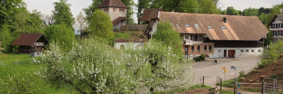 Schloss Buchegg Restaurant mit Schloss