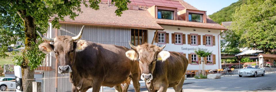 Landgasthof Roderis